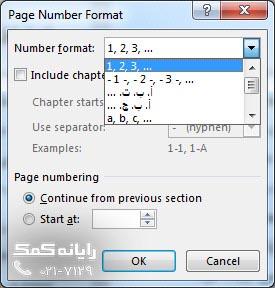 انتخاب نوع شماره گذاری از بخش Number f-rayanekomak