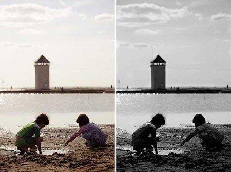 تبدیل عکس رنگی به سیاه سفید | رایانه کمک
